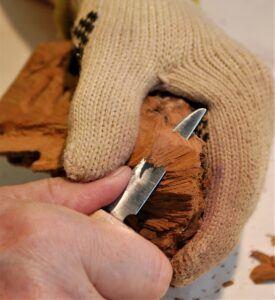 Thumb cut into the wood, using regular hold.